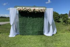 outdoor-green-wall-backdrop